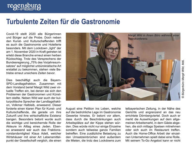 INTERVIEW IM REGENSBURG HABER MAGAZIN